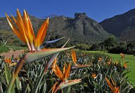 cape-town-garden-route-tour-03
