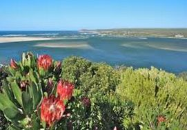 cape-town-garden-route-tour-15