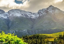 Cape-Town-Garden-Route-4 Day Private Tour