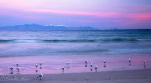 Cape Peninsula tours