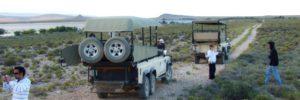 big-5-safari-drive