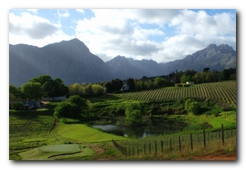 cape-wine-route