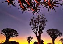 cape-town-south-africa-namibia13