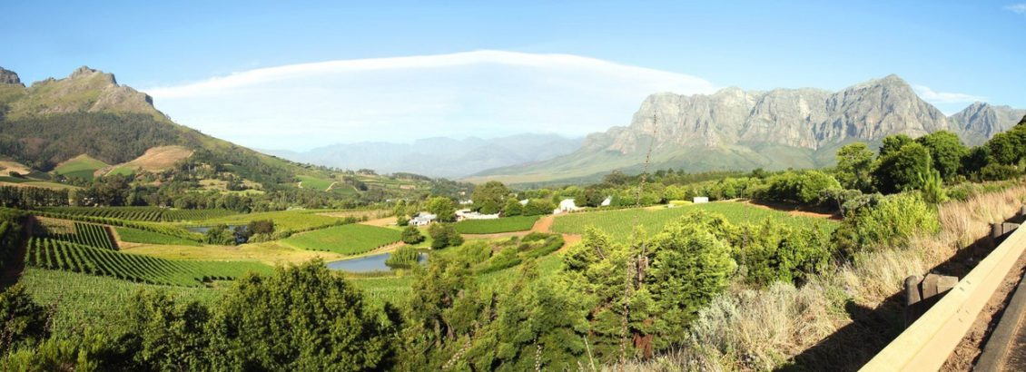cape-town-south-african-tours winelands
