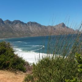 2 DAY HERMANUS & WHALE ROUTE