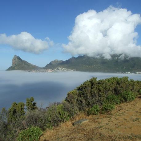 Hout Bay Mist
