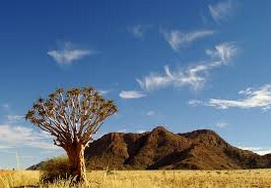 15 DAY SELF-DRIVE CAPE TOWN & NAMIBIA