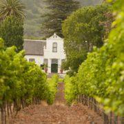 Buitenverwachting Wine Estate