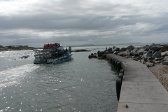 Shark Boat launching from Gansbaai Harbour