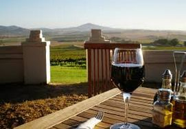 Cape Wine Farms sampling some delicious pinotage and enjoying the views