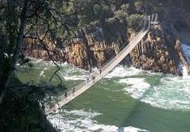 cape-town-garden-route-a great suspension bridge to walk over