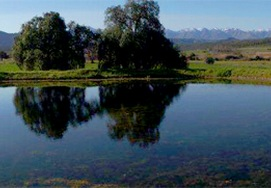 Cape-Town-Garden-Route-Private 5 Day tour package with Cango Caves