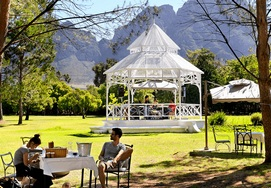 cape-town-holidays wine route