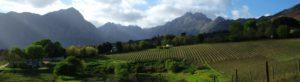 Cape_Winelands
