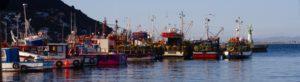Kalk_Bay_Harbour