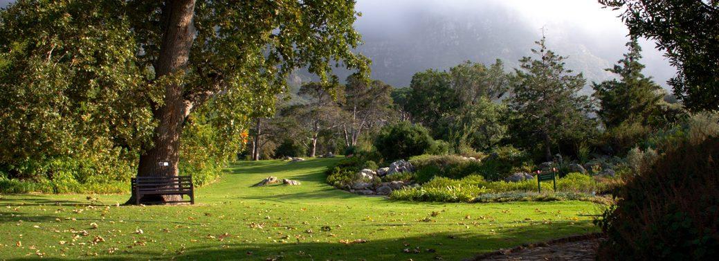 Kirstenbosch-botanical-gardens