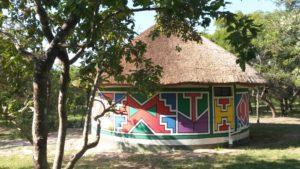 Timbavati Private Safari Lodge in the Kruger National Park