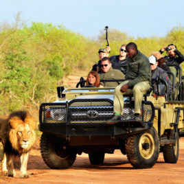 22 DAY SOUTH AFRICA WITH DRAKENSBERG