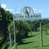 Birds of Eden the largest avery in the Garden Route